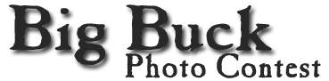 Big Buck Photo Contest