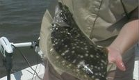 Speckled Trout and Flounder catch with guest Robin and Lance of All Metal Wholesale Roofing and BCBS of Louisiana guest Dale, Greg, and Kirt