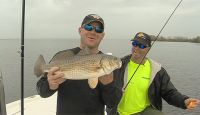 Join Theophile Bourgeous and Sam on a quest through the waterways of Jefferson Parish in search of fat fall redfish. Also Chef Peter Sclafani of Ruffino's restaurant shows his family secret of freezing fish properly.