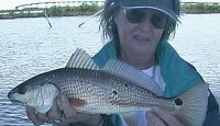 Join Capt. Bob and his guest as she continues to hammer the Specks, Flounder, and Redfish close to the launch in Leeville. Part 2