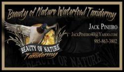 Beauty of Nature Waterfowl Taxidermy - Waterfowl Taxidermy, Habitat Scene's, Water Scen in Louisiana