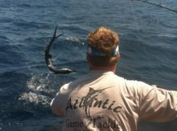 Atlantic Game & Tackle  - Hunting Fishing Archery Guns Dealer Charleston  in SC