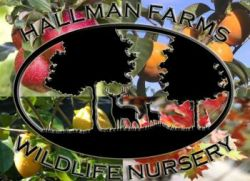 Hallman Farms Wildlife Nursery - Wildlife Nursery Farm Trees Fruit Columbia  in SC