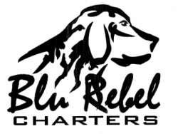 Blu Rebel Charters & Guide Service - guided saltwater and freshwater fishing trips  in LA