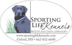 Sporting Life Kennels - Retriever and hunting training in MS