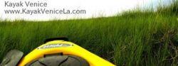 Kayak Venice - The BEST Kayak Fishing In Venice... in LA