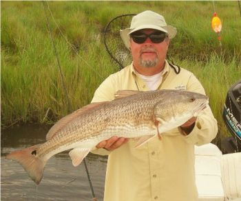 1 CHASING TAIL Charters - WORLD CLASS SPORT FISHING! for Redfish, Speckled Trout, Flounder, Tripletail & much more