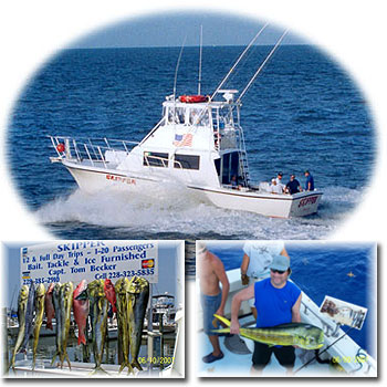 T&D Charters - Mississippi's Gulf Coast Finest fishing aboard The Skipper with Capt. Tom Becker, where we target: Red Snapper, Spanish Mackerel, Flounder, Amberjack, Shark, and Dolphin, (Mahi Mahi)