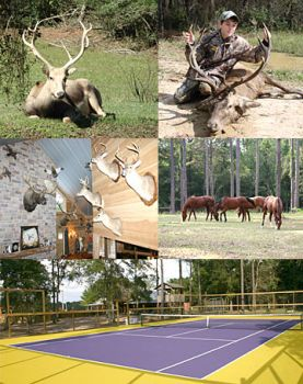 The Lodge At Tee Mamou - The Lodge at Tee Mamou