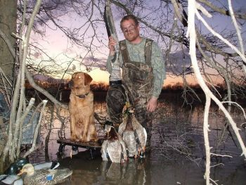 Ace's Gun Dogs - We breed raise and train premium duck hunting retrievers. We offer puppies, started dogs and finished dogs for sale. We also offer tune ups and problem solving training for your retriever. We DO NOT use electric collars in our training.
