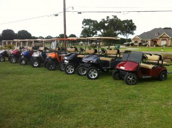 Mud Bugs Golf Carts - Looking for a custom golf cart. That is Mud Bugs speciality.  The only limitation is your imagination. Call Steve today to talk about how you want your cart to look.