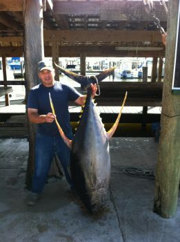 Captain Cook Charters - Andy is a Plaquemines Parish native who feels the Gulf of Mexico is his own backyard. Call 504-319-7300 for an offshore trip that you will never forget.