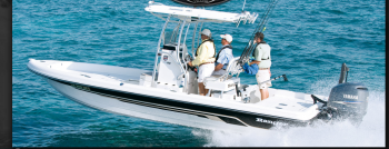 Boat Stuf - Saltwater Boat Specialists - Alweld,Twin Vee, Ranger, Sea Fox, Blue Wave, Magi Tilt trailers,  Sport Trail Trailers, Cosignment boats