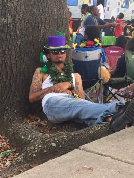 Judy Lewis Beard: Mardi Gras Mambum...Man DOWN