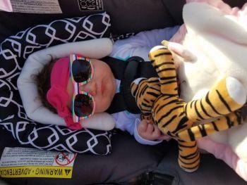MindyHymel Beard: A little tiger snooze