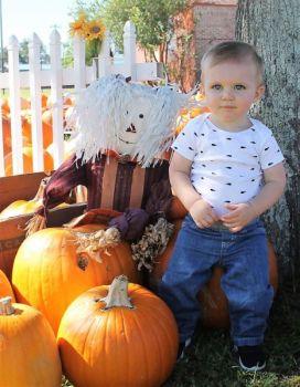 "VickiCain Beard: Pumpkin ""EYES"""