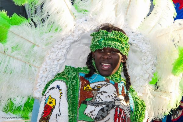A Wild Magnolia Mardi Gras Indian