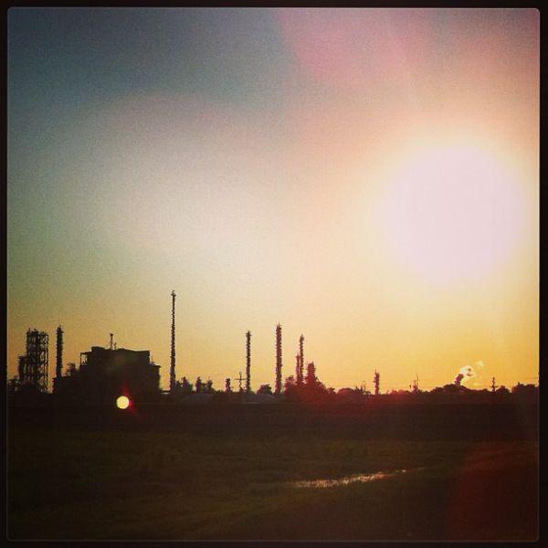 Norco's Morning Glow-Neema Murimi