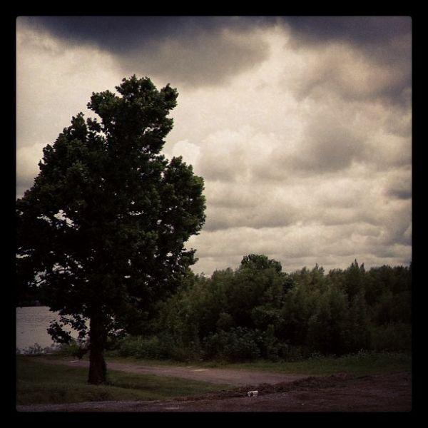 Rolling Thunder-Neema Murimi