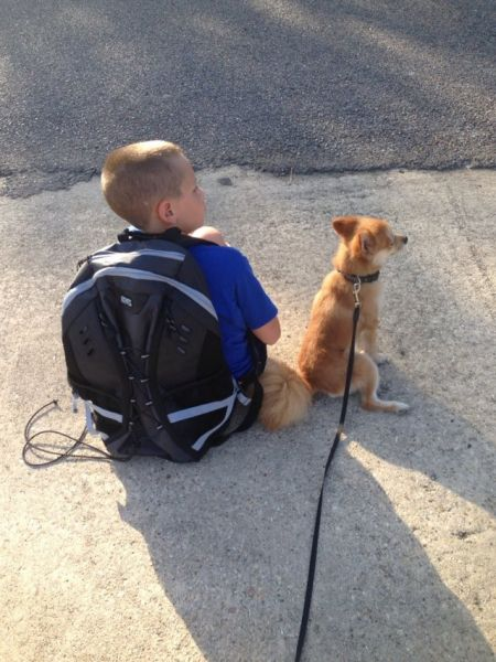 boy and his best friend - Daniel  anderson