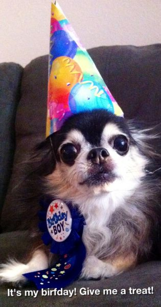 It\'s my birthday! - Jennifer Becnel