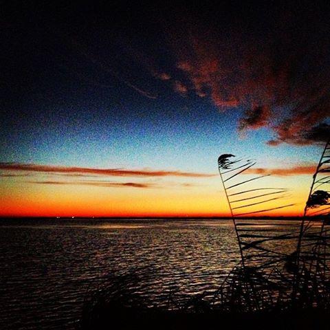 Southern Sunrise-TravisFaucheux