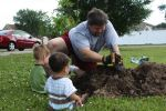 Carol Plack Beard: Planting Trees for Earth Day
