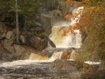 jolenedufrene Beard: Maine Foliage