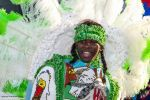 Mike Peters Beard: A Wild Magnolia Mardi Gras Indian