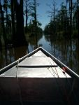 Gladys modica Beard: best little boat ride