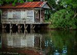 TrentPearsall Beard: Old Cabin on Bayou Gauche