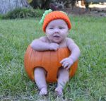 Rebecca  Greaud Beard: Cutest pumpkin in the patch!