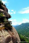 billyhoward Beard: Chimney Rock, NC