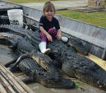 Kim Zeringue  Beard: Cajun Girl 2. Real Gators this time!