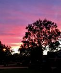 Beautiful Evening!, Photo submitted by DebraGomez